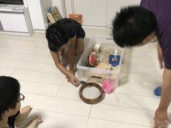 リンちゃん週1の世話5.jpg