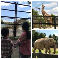 動物園6.jpg
