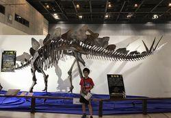恐竜と科学館7.jpg