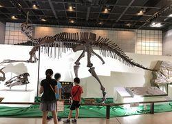 恐竜と科学館8.jpg