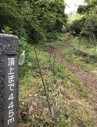 高草山15.jpg