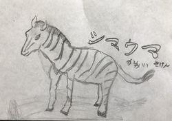 S動物2.jpg